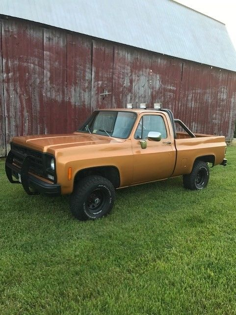 Daily driver 1979 Chevrolet C 10 Custom DELUXE vintage truck