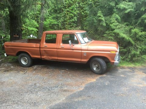Manual transmission 1976 Ford F 250 vintage for sale