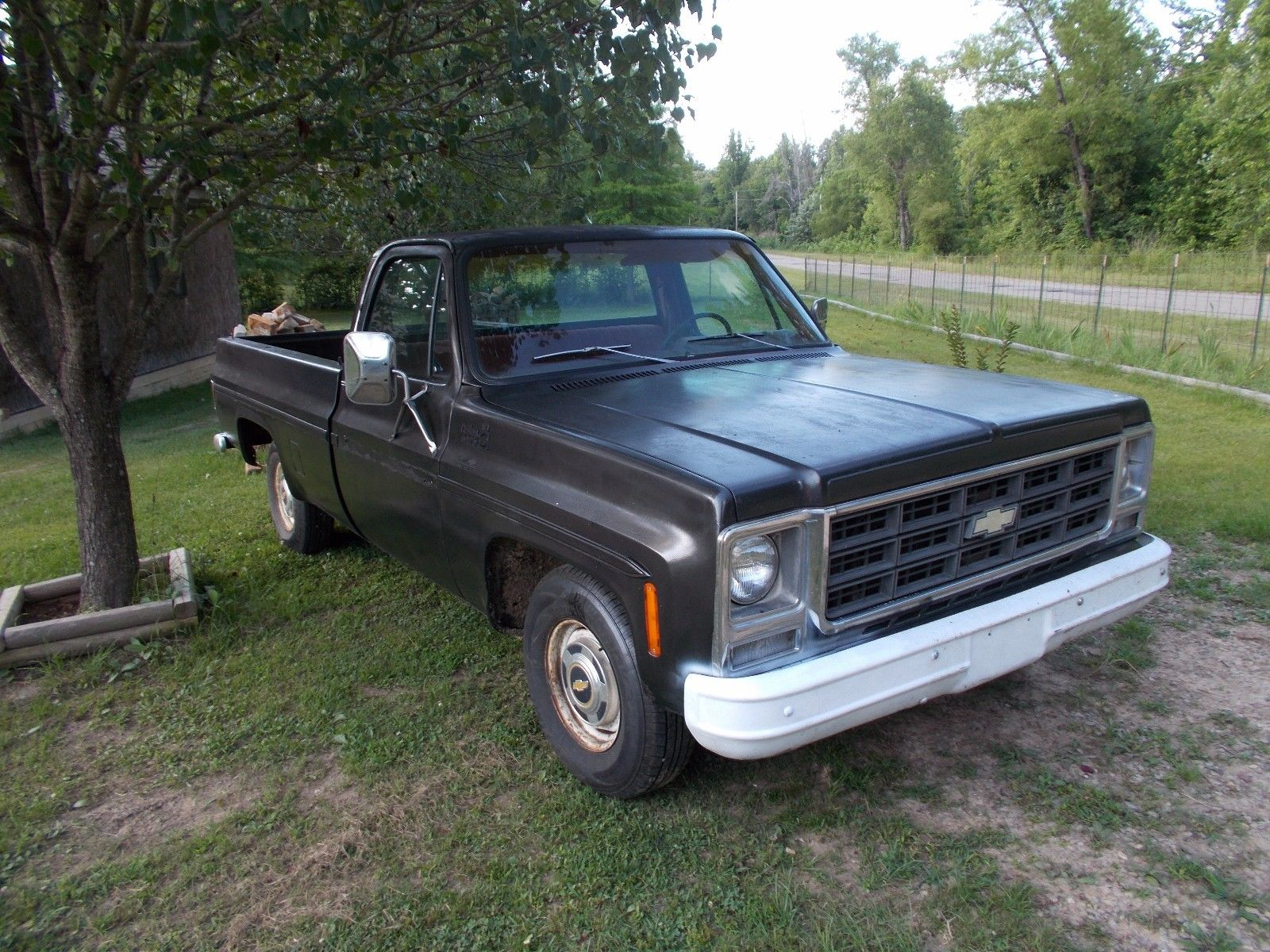 needs attention 1979 chevrolet c 10 custom deluxe vintage for sale. Black Bedroom Furniture Sets. Home Design Ideas