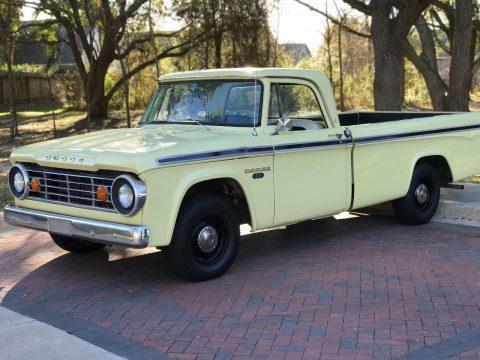 new paint 1967 Dodge Pickups vintage for sale