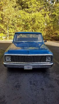 powerfull 1969 Chevrolet C 10 vintage truck for sale