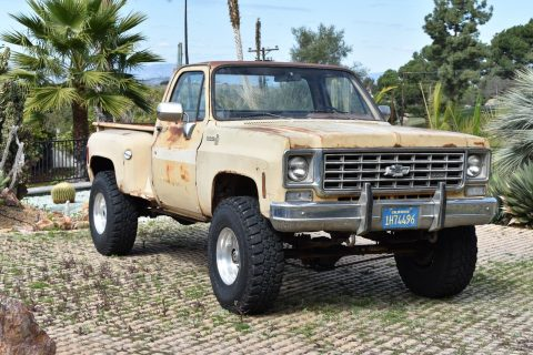 nice patina 1975 Chevrolet Pickups vintage truck for sale