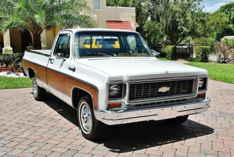 low miles 1974 Chevrolet Cheyenne pickup vintage for sale