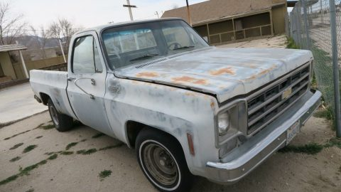 project 1975 Chevrolet C 10 Custom Deluxe vintage for sale